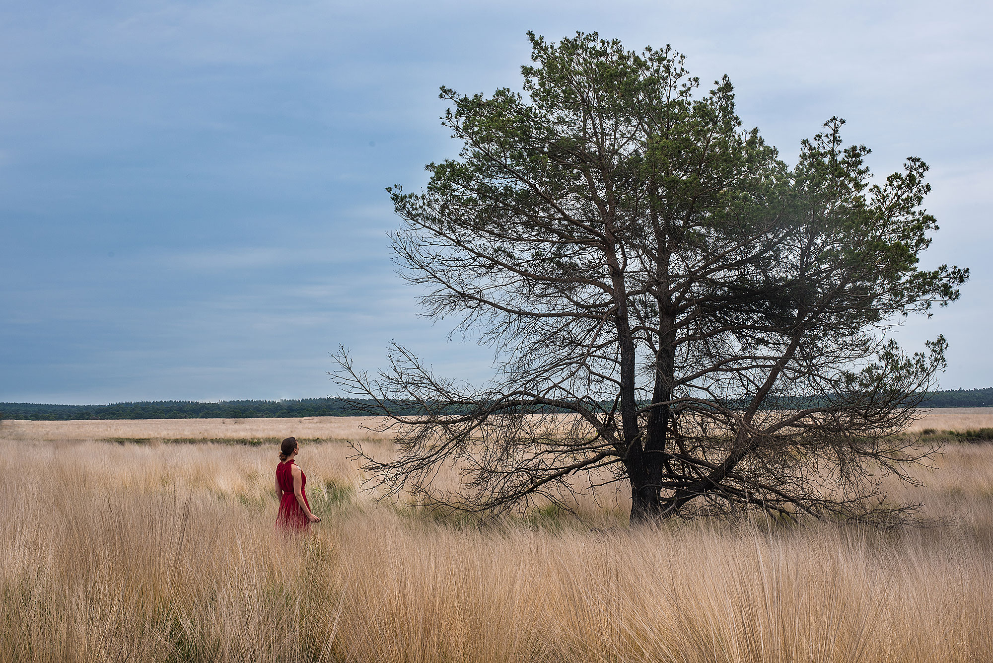 The Dress Tales | De Hoge Veluwe